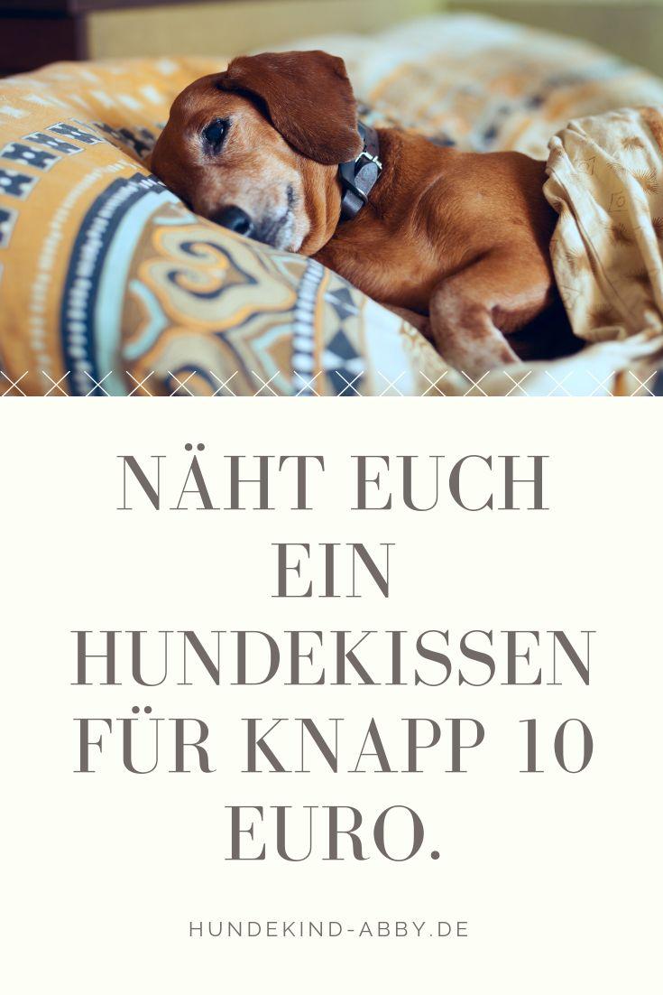 DIY – Ein Kissen für den Hund nähen.