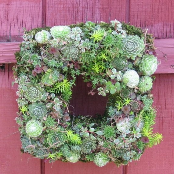 Beautiful Love This Succulent Wreath For My Front Door