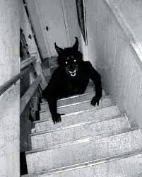 Image result for werewolf sighting