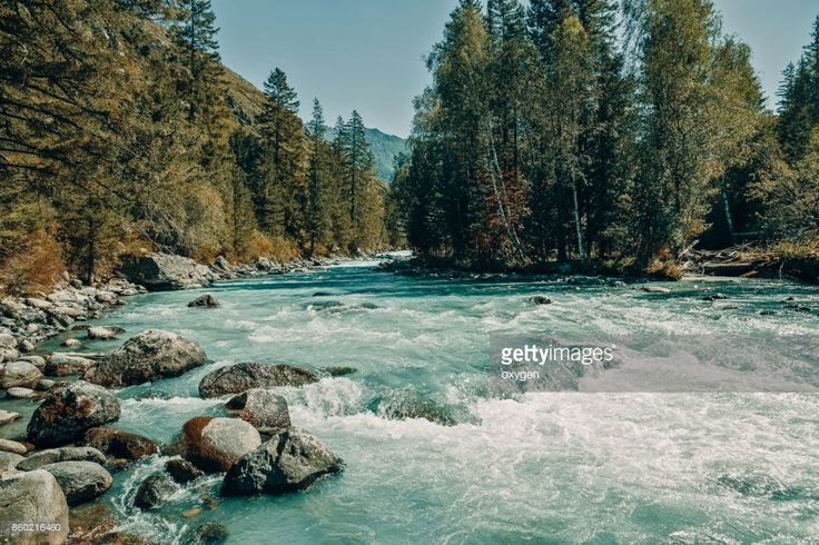 Stock Photo : The inflow of Kucherla river. Altai Mountains, Ust-Koksa, Russia. by Oksana Ariskina on @gettyimages. #OksanaAriskina #Photography #Nature #Altai #Altay #Mountain #Russia #River #gettyimages #gettyimagescreative  #gettyimagesnew #getty #gettycreative