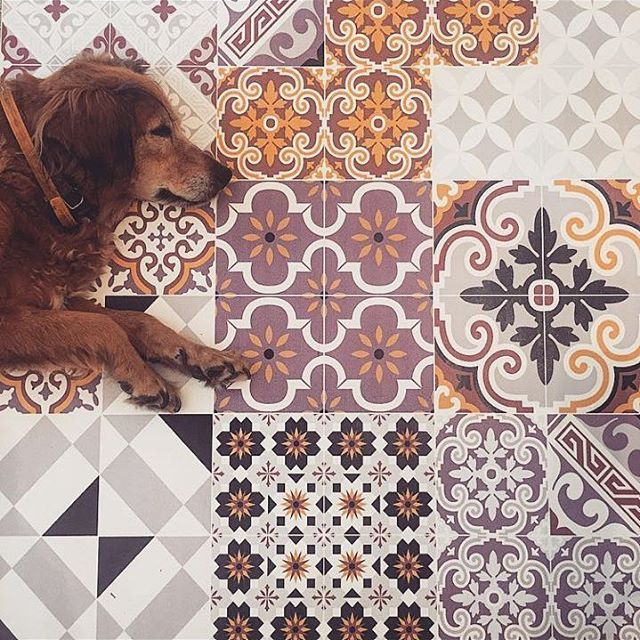 Sita on Eclectic E3 Beija Flor Carpet.  Happy #nationaldogday ♥ #BeijaFlorWorld www.beijaflorworld.com
