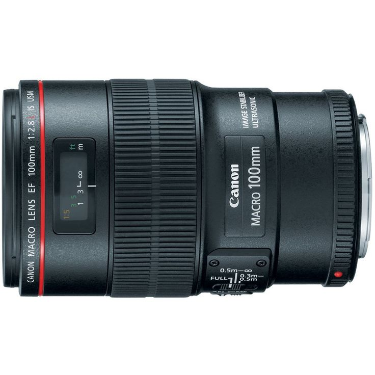 Reality: April 2016 AmazonSmile : Canon EF 100mm f/2.8L IS USM Macro Lens for Canon Digital SLR Cameras : Digital Slr Camera Lenses : Camera & Photo