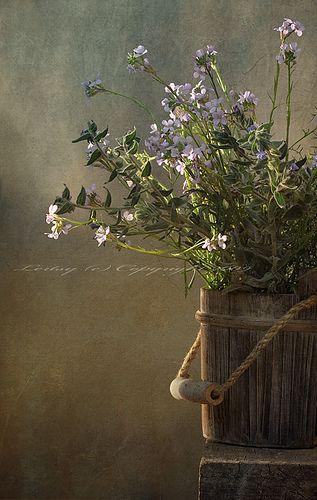 wooden bucket of flowers