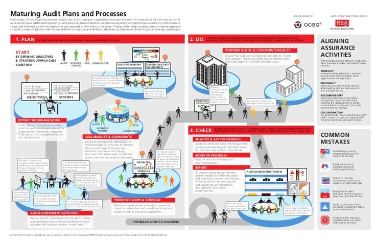 Infographic: Maturing Audit Plans and Processes