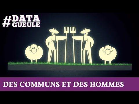 Des communs et des hommes #DATAGUEULE 42 - YouTube