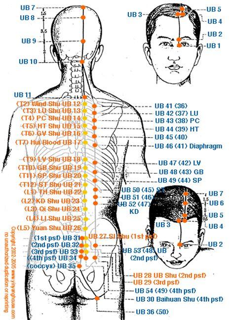 MERIDIANO DE PULMÓN- yin     El meridiano del pulmón representa el primer meridiano en el ciclo de energía.     Origen: P1 : Zona clavic...