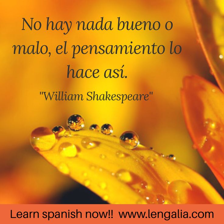 Aprender español online ⬇️⬇️⬇️pruébalo ahora gratis!  ⭐️www.lengalia.com⭐️ #Learnspanish,#spanishvocabulario, #spanishcourse #aprenderespañol #spanischlernen, #spanischkurs, #spanischevokabeln ,#español, #españa, #espanha, #spanish , #spanisch, #spanischekultur, #spanishculture, #spanishlife, #spanischunterricht, #cursodeespañol, #españa, #spain, #spanien , #poem, #poema, #gedicht, #spruch, #lebensweisheiten , #máxima , #maxim