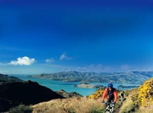 Mountain Biking in the Port Hills