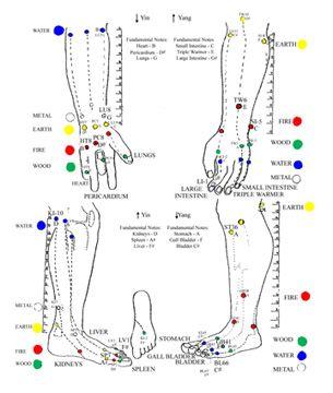 Los cinco puntos Shu(WuShuXue) Cada uno de los 12 meridianos principales posee cinco puntos Shu, que se sitúanentre los dedos de la mano y de los codos, entre los dedos de los pies y las rodill…