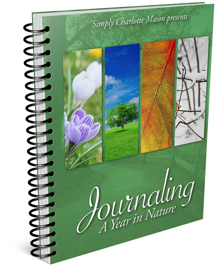 Journaling A Year In Nature