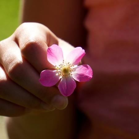 Gaining by giving   Brett Elliott's Ultimate Herbal Detox