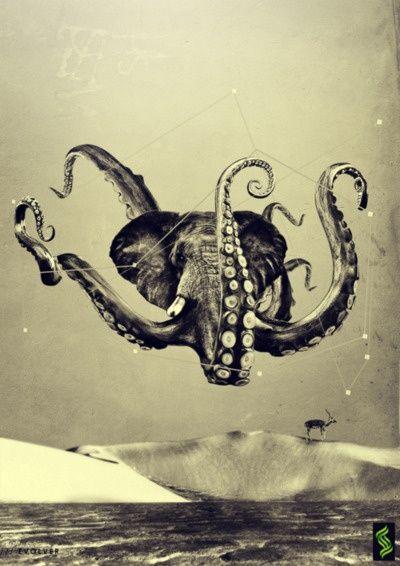 Octopus Fiction / by Daniel Emeka