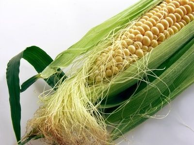 Easy Way to Remove Corn Silk From Corn on the Cob