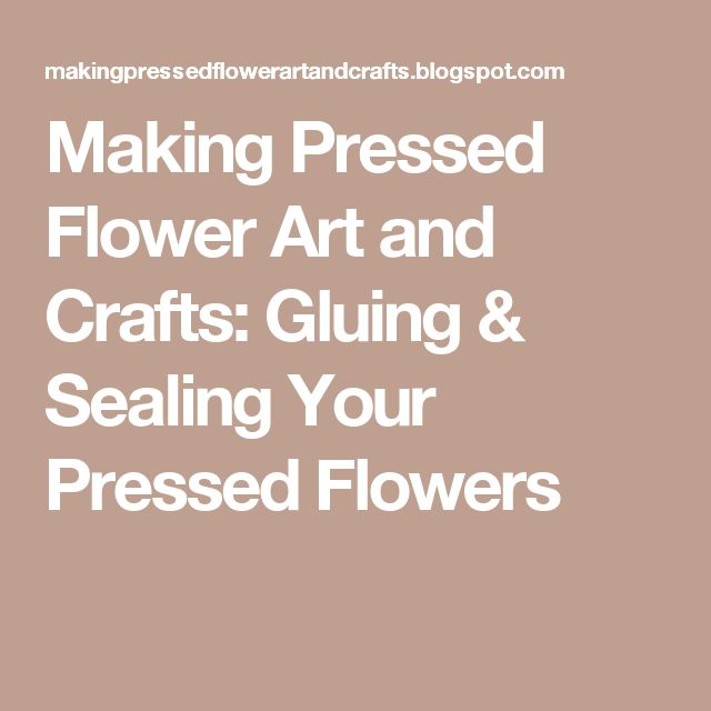 Making Pressed Flower Art and Crafts: Gluing  & Sealing Your  Pressed Flowers