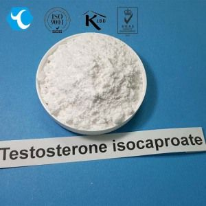 Steroid Hormone Raw Powder Testosterone isocaproate / Test ISO CAS 15262-86-9 on Made-in-China.com