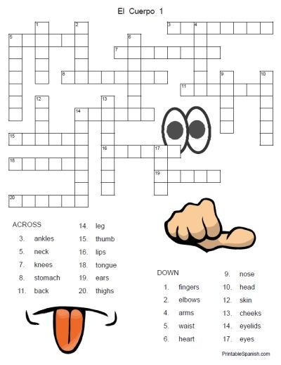 printable spanish freebie of the day el cuerpo crossword puzzle 1 from. Black Bedroom Furniture Sets. Home Design Ideas