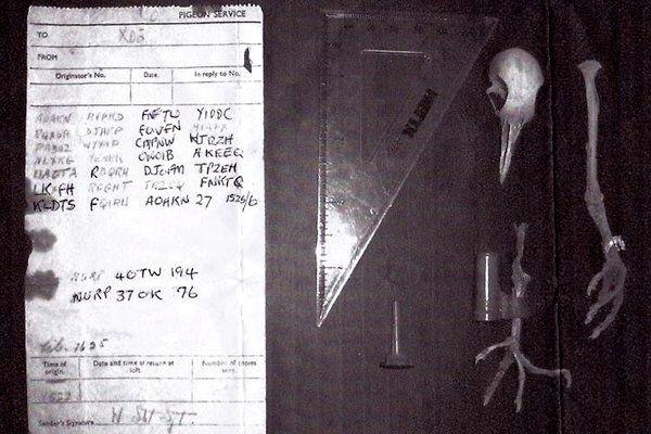 Cuando el mejor cifrado tiene setenta años de antigüedad: el caso de la paloma mensajera  40TW194