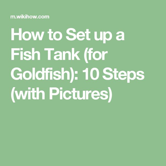 how to set up fish tank for goldfish