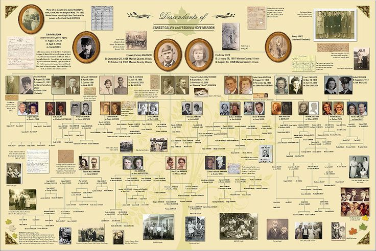 Family Tree presentation feature on Ancestry.com