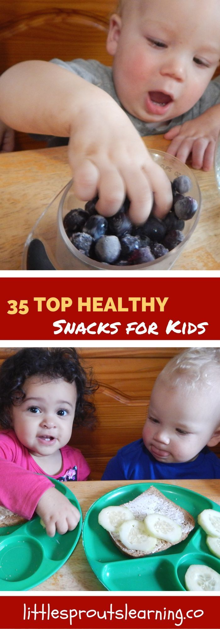 Do you ever get tired of serving the same ole thing to your kids for snack? Do you wish you had healthy snacks for them you feel good about?