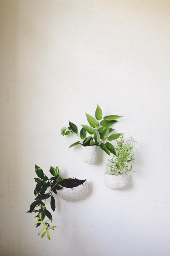 DIY Clay Wall Planters #plants #walldecor #planters