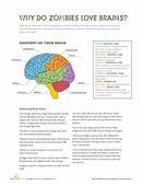 Black Beauty Reading Comprehension | Worksheet | Education.com