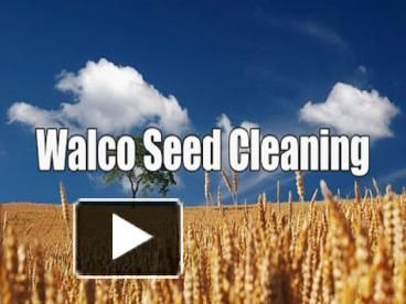 http://www.walcoseed.com.au/ - If you are looking for the most natural seed cleaning in Gladstone at a price which you can afford, Walcoseed is the most obvious option for you.