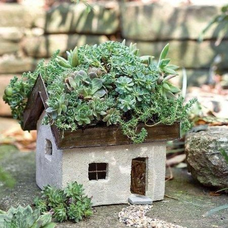 Miniature Fairy Garden Tabby Cottage - it's got a green roof - the best of both worlds...