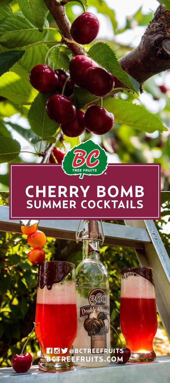 Cherry Bomb Summer Cocktails | Sweet muddled cherries make for a sensational summer cocktail surely to please on the patio. BC Tree fruits - Look For Our Leaf!