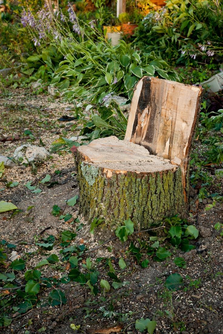 Tree stump fairy house - Repurposing A Tree Stump As A Seat