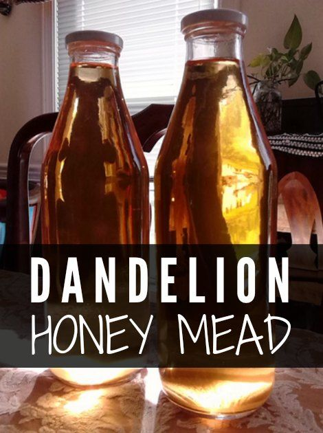 Dandelion honey mead   A dandelion honey mead is similar to a wine that you can make at home for a beverage, which has a great taste and a kick to match.