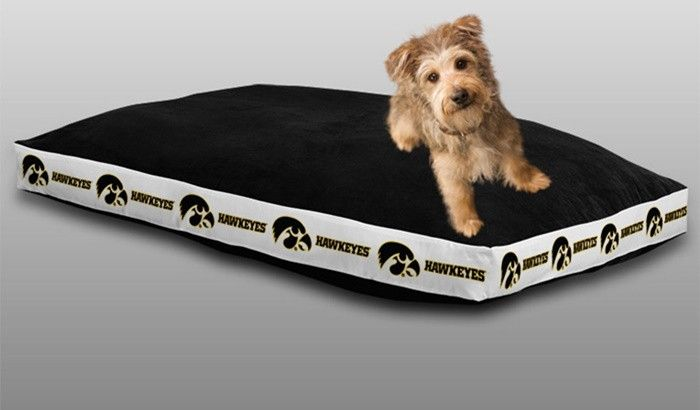 Use the code PINFIVE to receive an additional 5% discount off the price of the  Iowa Hawkeyes Sports Logo Pet Bed at SportsFansPlus.com