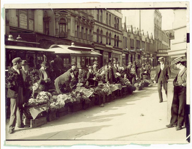 Flower sellers in front of cable trams, King Street, c.1900/ Photographer Unknown