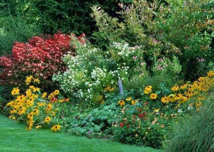 Massif d'été : alltium, lavandula stoeches et gladiolus byzantinus - J. Lebret - Rustica - Clos du Coudray