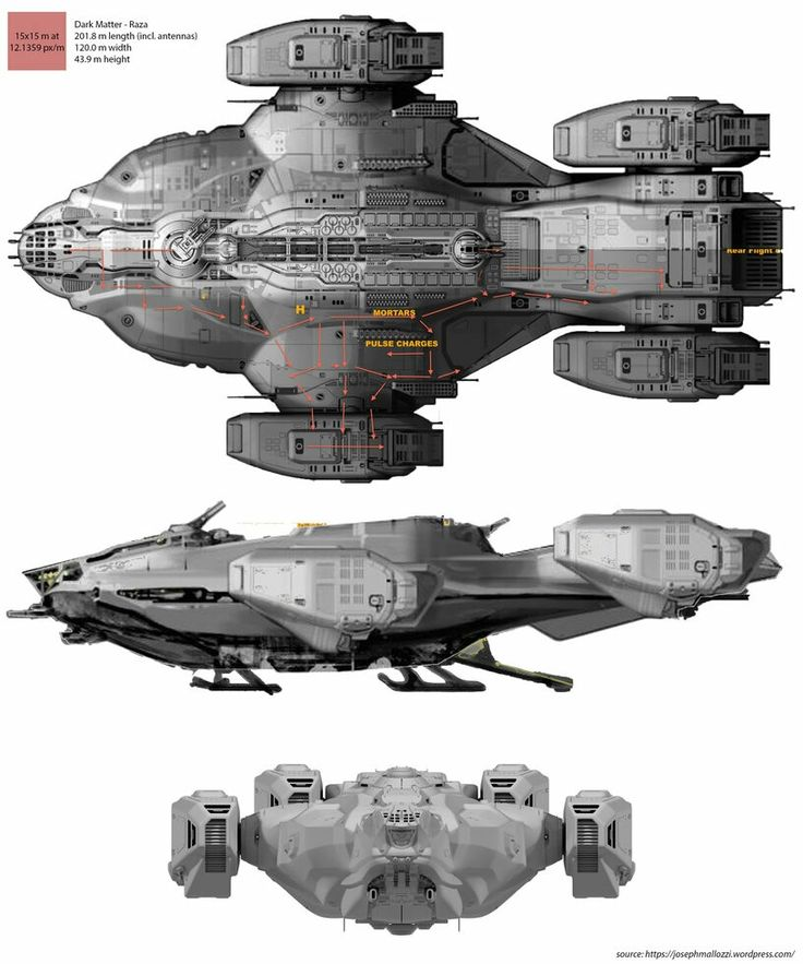 Raza Spaceship in Dark Matter