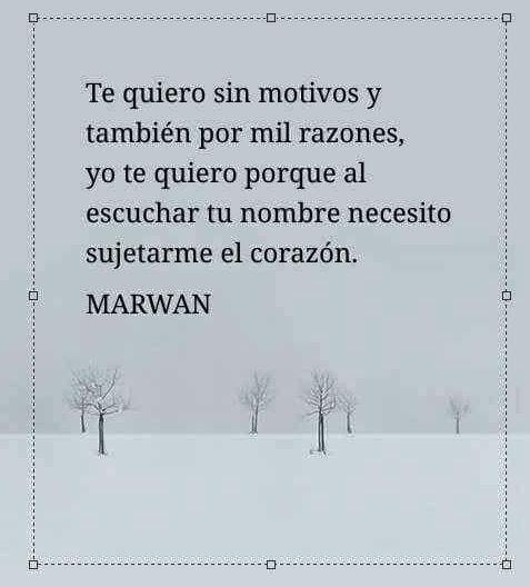 〽️ Marwan