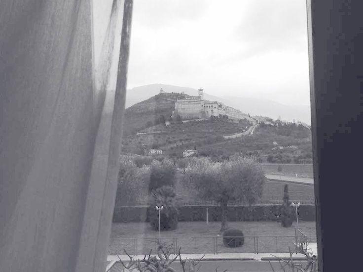 Vista su Assisi con Agriturismo Il Girasole Assisi