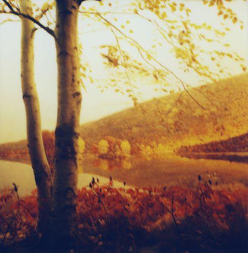 by cori kindred - http://www.flickr.com/photos/koreana/4078298919/