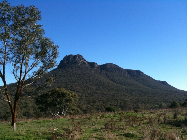 A postcard from Dunkeld on a sunny winter's day