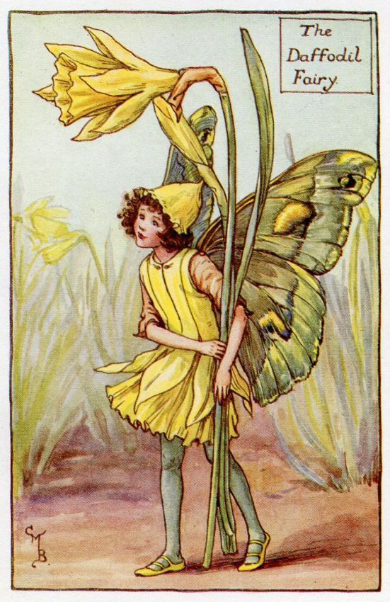 Daffodil Flower Fairy Vintage Print, c.1927 Cicely Mary Barker Book Plate Illustration