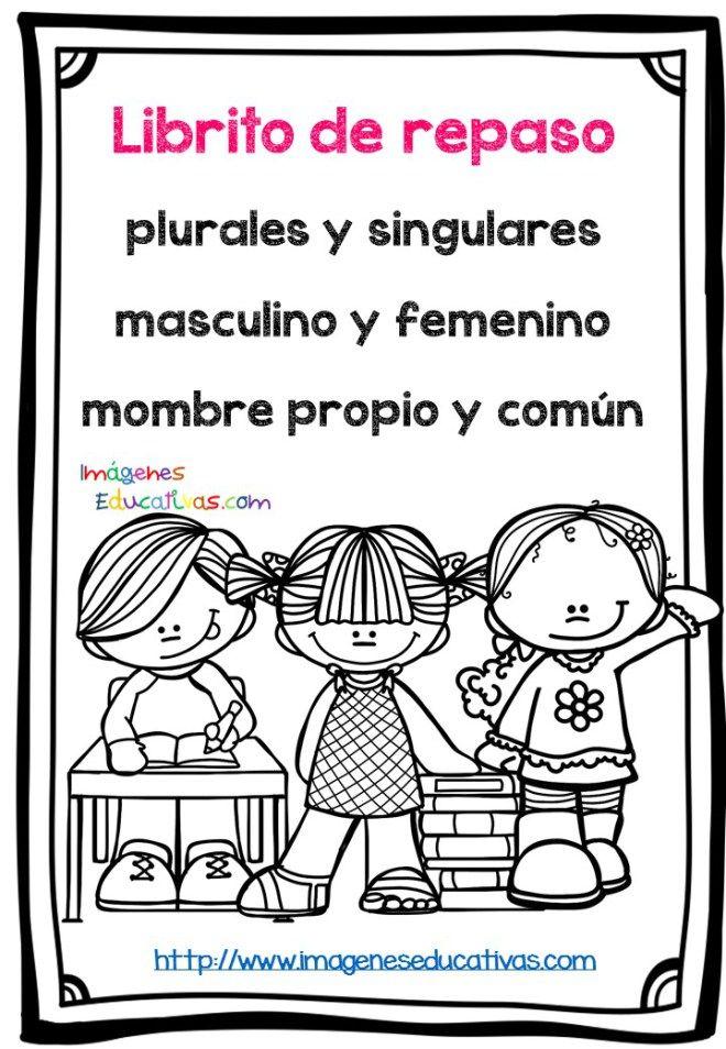 Fichas de repaso singular plural masculino y femenino (1)