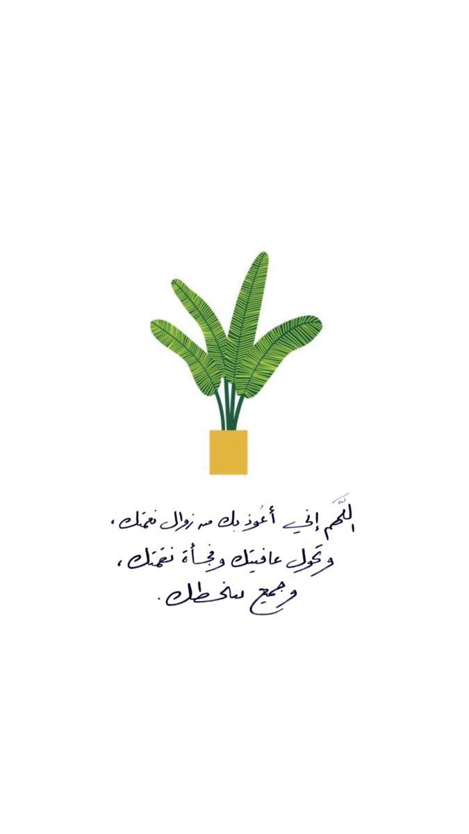 اللهم يارب دعاء Quran Quotes Love Islamic Love Quotes Quran Quotes