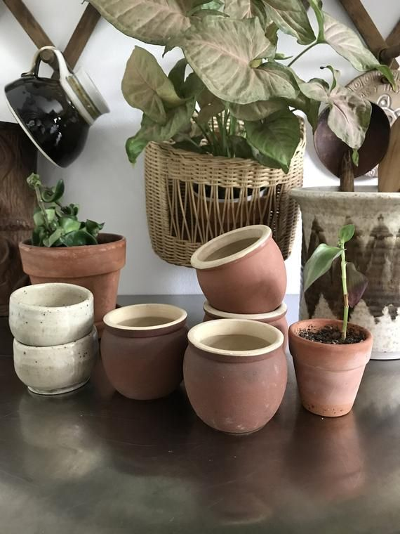 4 Little Planters Terra Cotta Rustic Tiny Planter Set Of 4 Upcycled Old English Stoneware Little Plant Pots Planters Rustic Planters Indoor Plants Low Light