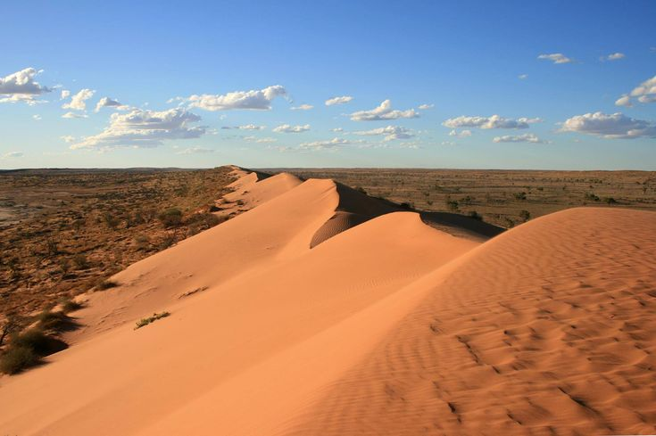 Big red sand dune, Simpson desert