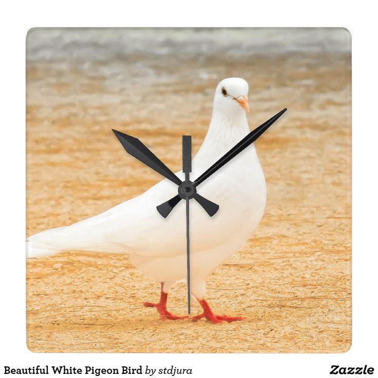 Beautiful White Pigeon Bird Square Wall Clock   #beautiful #white #pigeon #bird #square #wallclock #clock #time #animals #zazzle