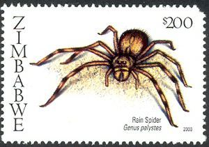 Stamp catalog : Stamp ‹ Spiders of Southern Africa - Rain spider (Genus palystes) Spiders of Southern Africa - Rain spider (Genus palystes)  Country:     Zimbabwe Series:     Fauna Catalog codes:     WADP Numbering System - WNS ZW014.03     Michel ZW 761 Tags:     Animals (Fauna) Issued on:     2003-07-28 Format:     Stamp Perforation:     14½ x 14¼ Size:     41 x 27 mm Face value:     200 Z$ - Zimbabwean dollar