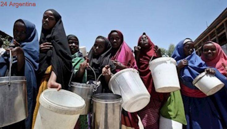 Medio millón de personas corren riesgo de hambruna en Somalia, según alertó una ONG