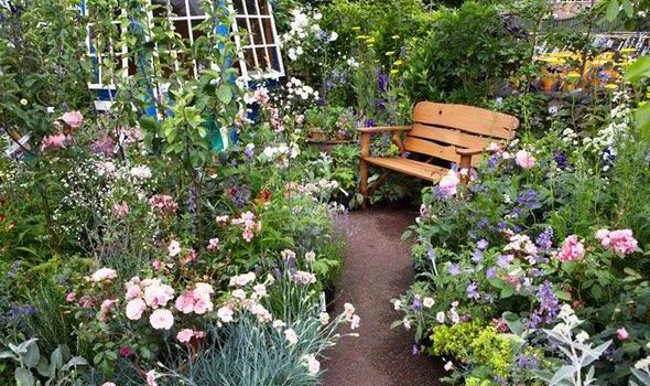 CREATE your own secret garden and discover a serene world of peace and tranquility, says Alan.