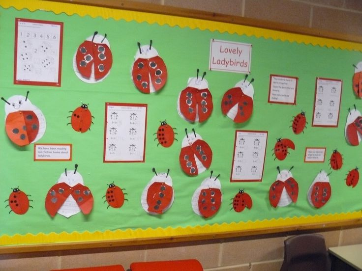 Ladybird display (Reception class): ladybird factual writing on ladybird outline with split-pin movable wings. The small laminated ladybirds have 10 spots - children count how many spots they can see, and work out how many spots must be hidden under the other (moveable) wing.