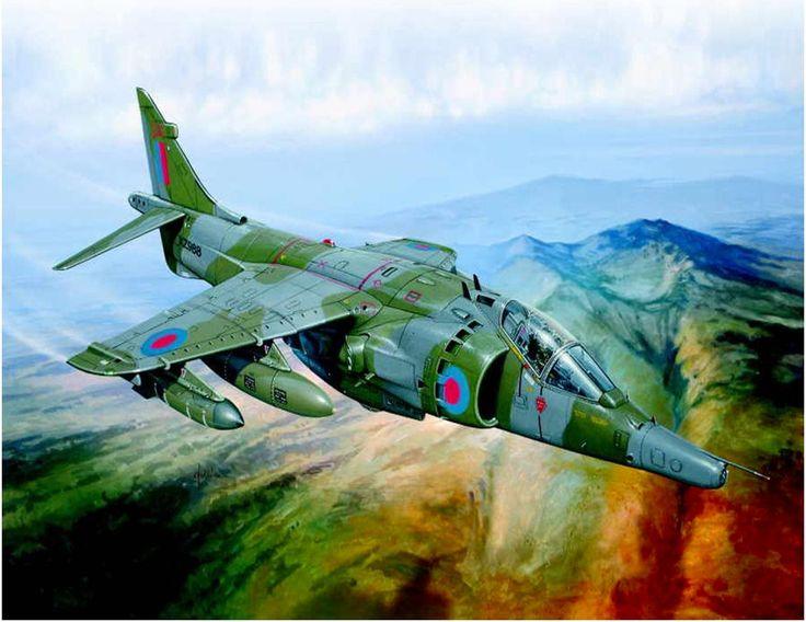 RAF Sea Harrier, Falklands War